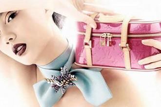 lady fashion purse copy